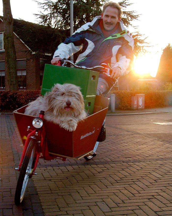 Bakfiets Cargo Bike Short