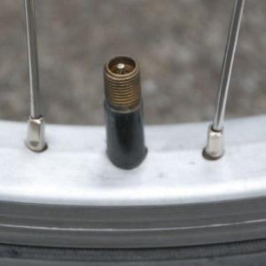 Schraeder Autoventil ohne Kappe