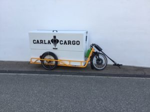 Carla Cargo Box