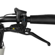 Urban Arrow Family LTD 2019 Magura 2